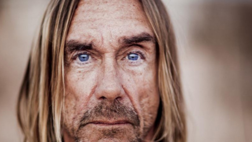 """Free""  le nouvel album du géant du Rock Iggy Pop"