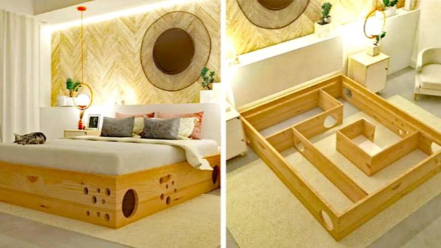 Ce lit est parfait pour les propriétaires de chats