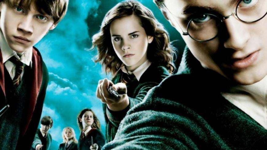 Les studios Warner lancent un appel aux plus grands fans d'Harry Potter !