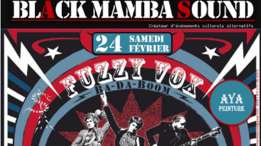 Black Mamba Sound réalise une soirée Rock